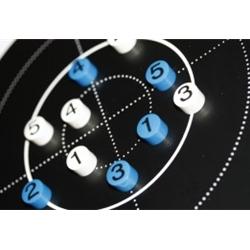 Larsen Biathlon Magnetset 10 Magneter
