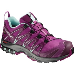 Salomon Shoes Xa Pro 3D GTX W  Snabb Vandringsko