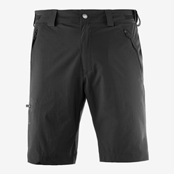 Salomon Wayfarer Short M